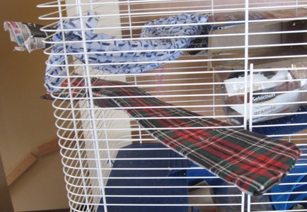 Hammock-shelf for Rodent Friends!