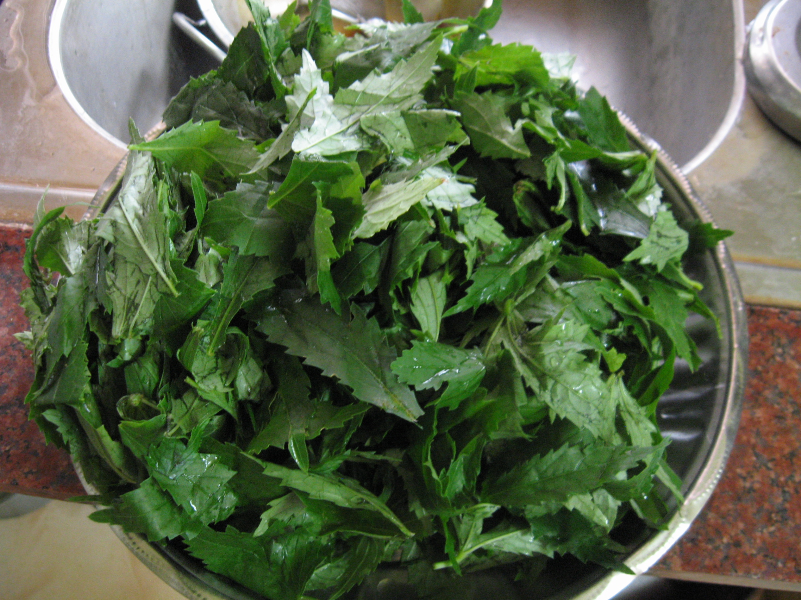 Picture of Harvest Gongura Leaves
