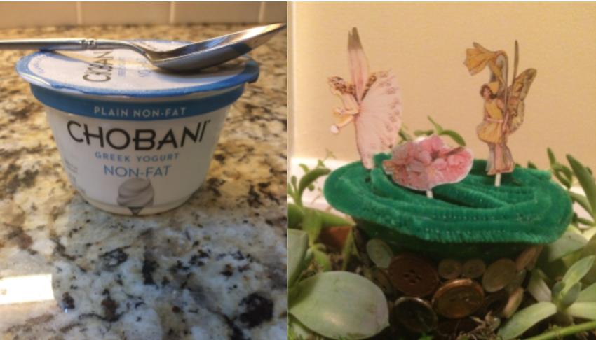 Picture of Yogurt Cup Fairy Garden
