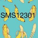 SMSBACON12301