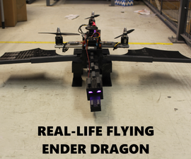 Real Life Flying Ender Dragon