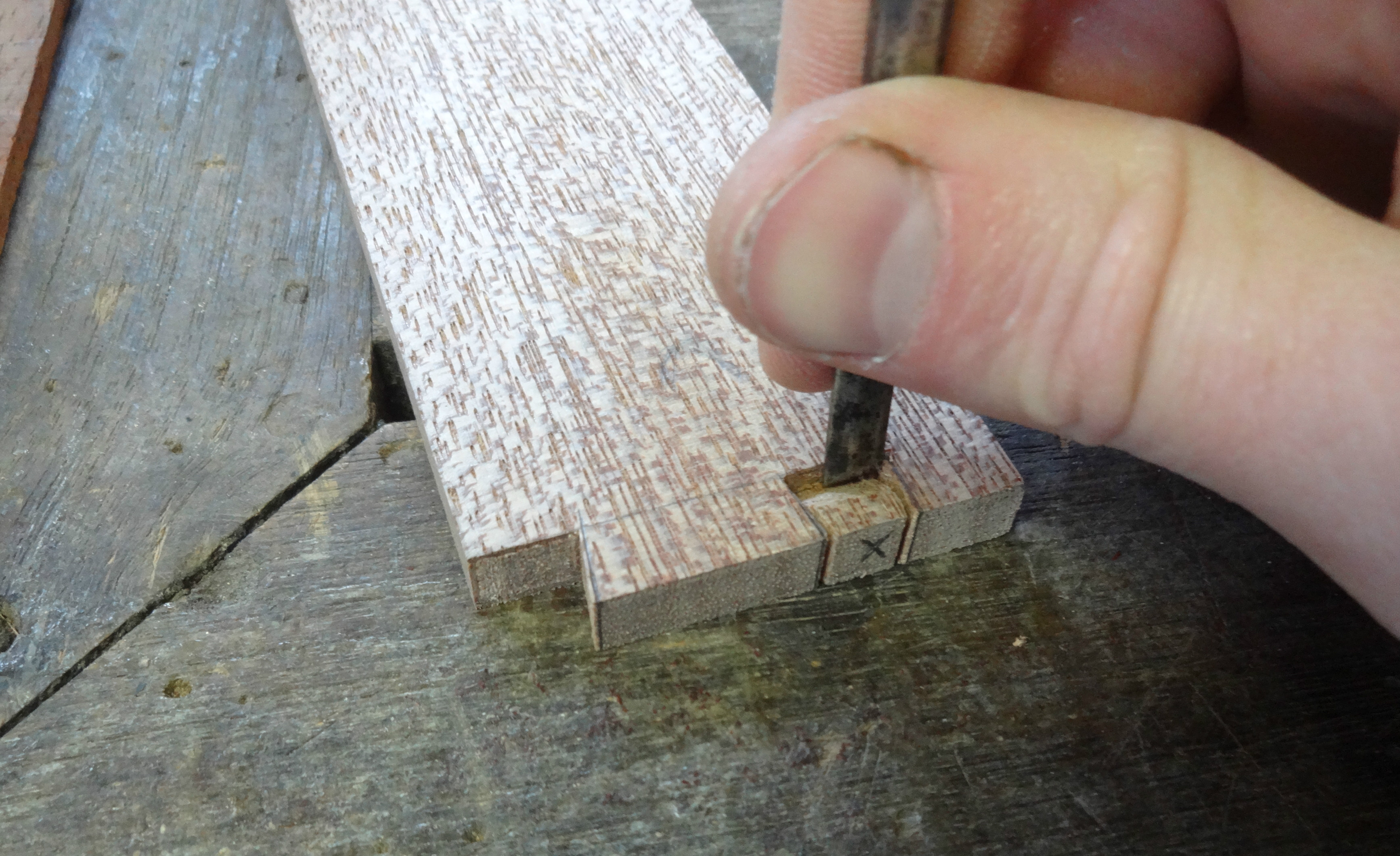 Picture of Dovetails: the Lid Side + Grooves