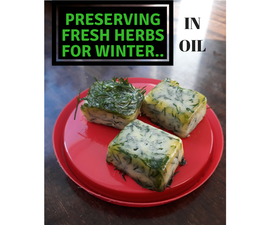 Fresh Herb Oil Cubes for Winter