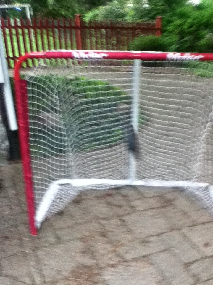 Picture of The Puck Should Be Below the Crossbar