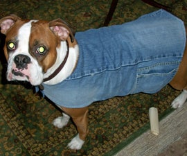 Make a lined dog jacket from recycled denim and a scarf for free! (or nearly)