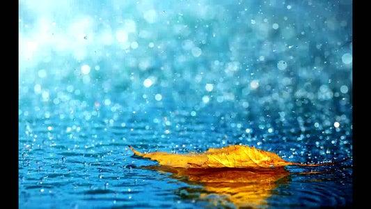 Meten Aan Water: Rain Intensity Meter