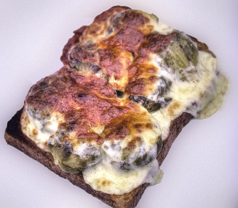 Picture of Cheese on Sprouts on Toast