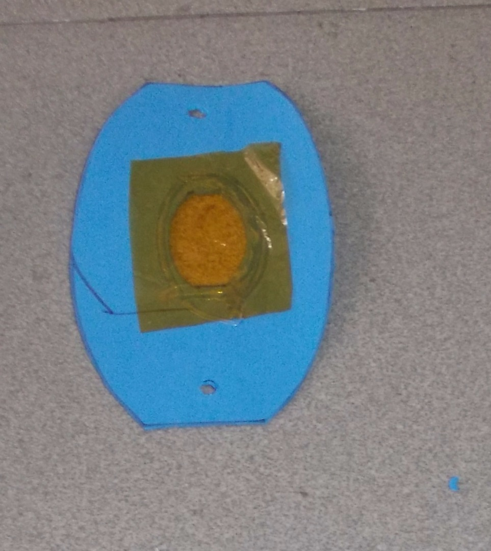 Picture of Cut the 6 Pieces of the Glass Paper and Glue Them Onto the Oval Holes on the Petals