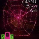 DIY GIANT Spider Web