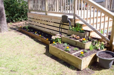 Plant Herbs and Vegetables