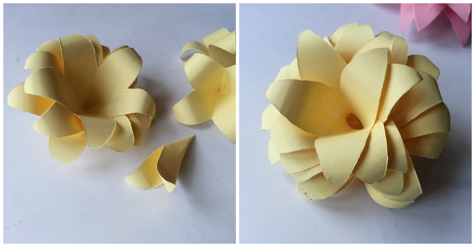 Picture of 8 Petals