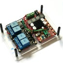 Auto-switching Bluetooth Amplifier