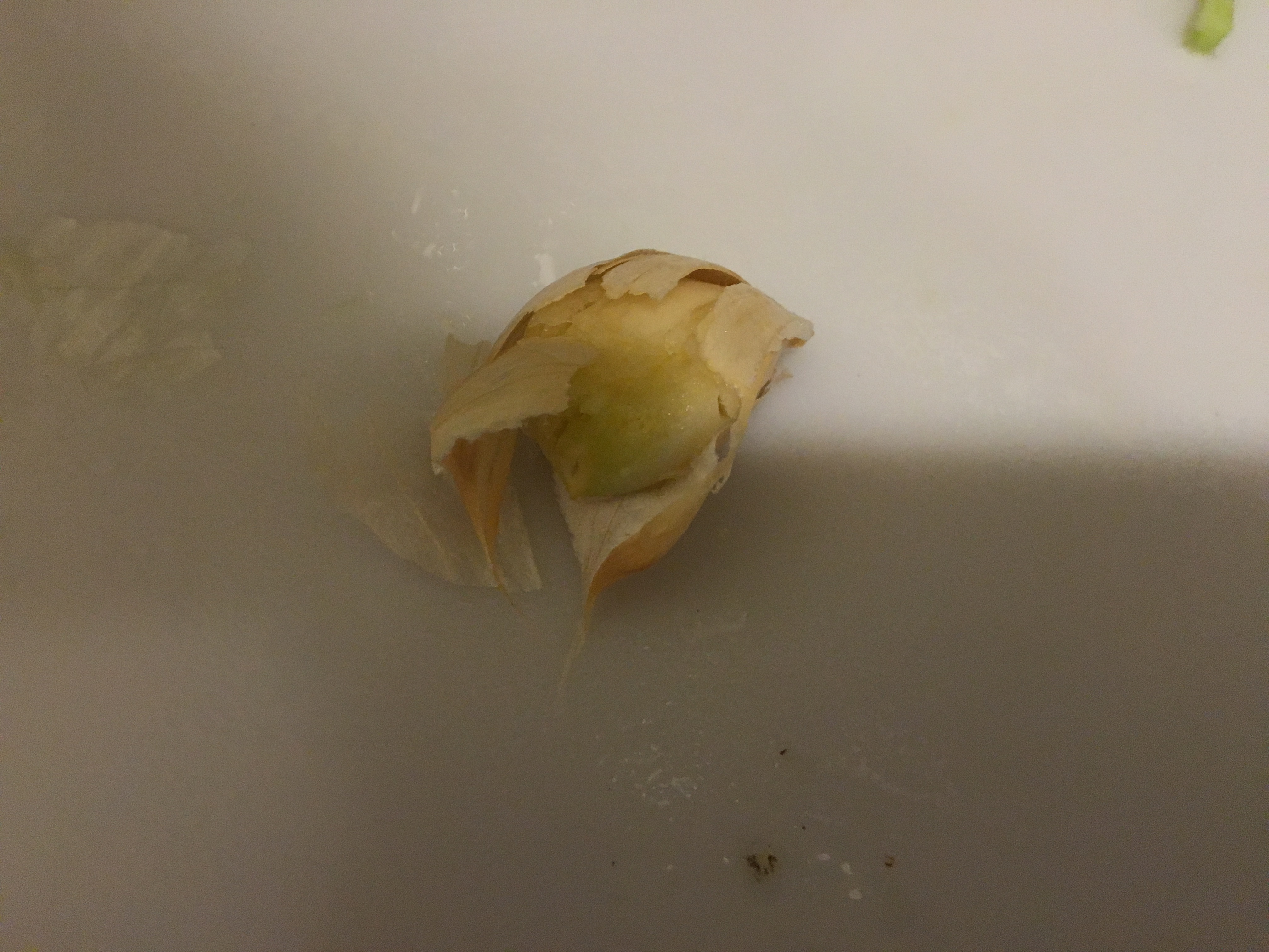 Picture of Peel and Add Garlic
