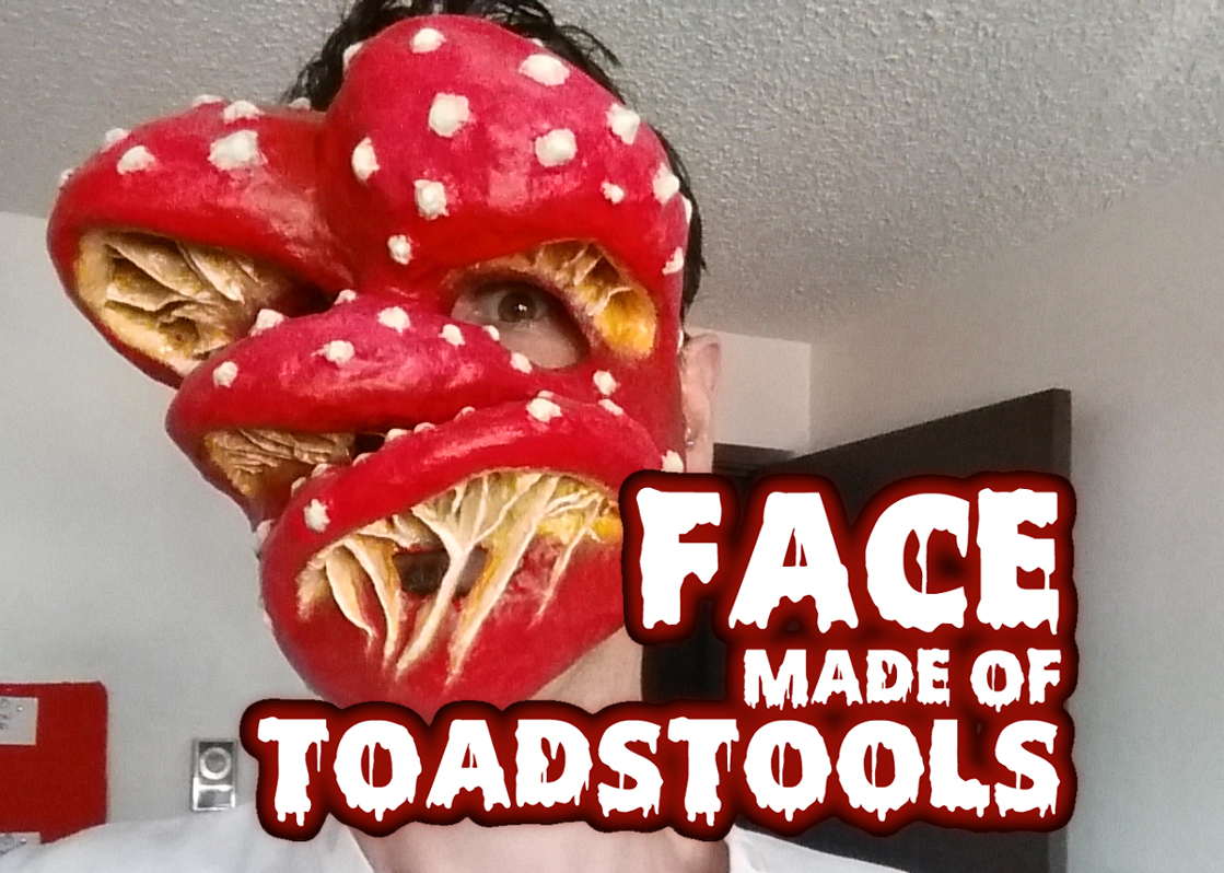Picture of Face Made of Toadstools (Paper Mache Mask)