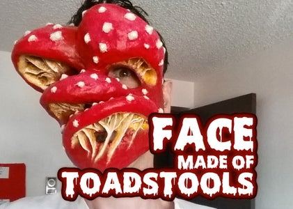 Face Made of Toadstools (Paper Mache Mask)
