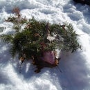 How to make a snow shelter