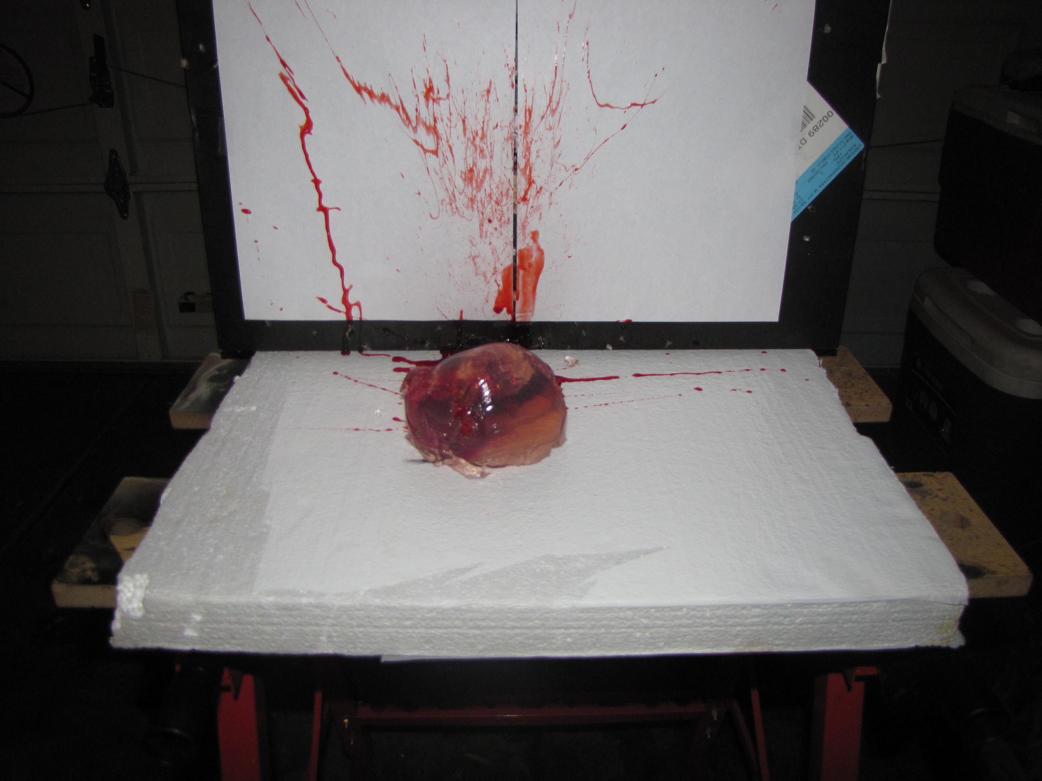 """Picture of """"Bleeding"""" Ballistic Gel Target"""