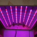 DIY LED Grow Light