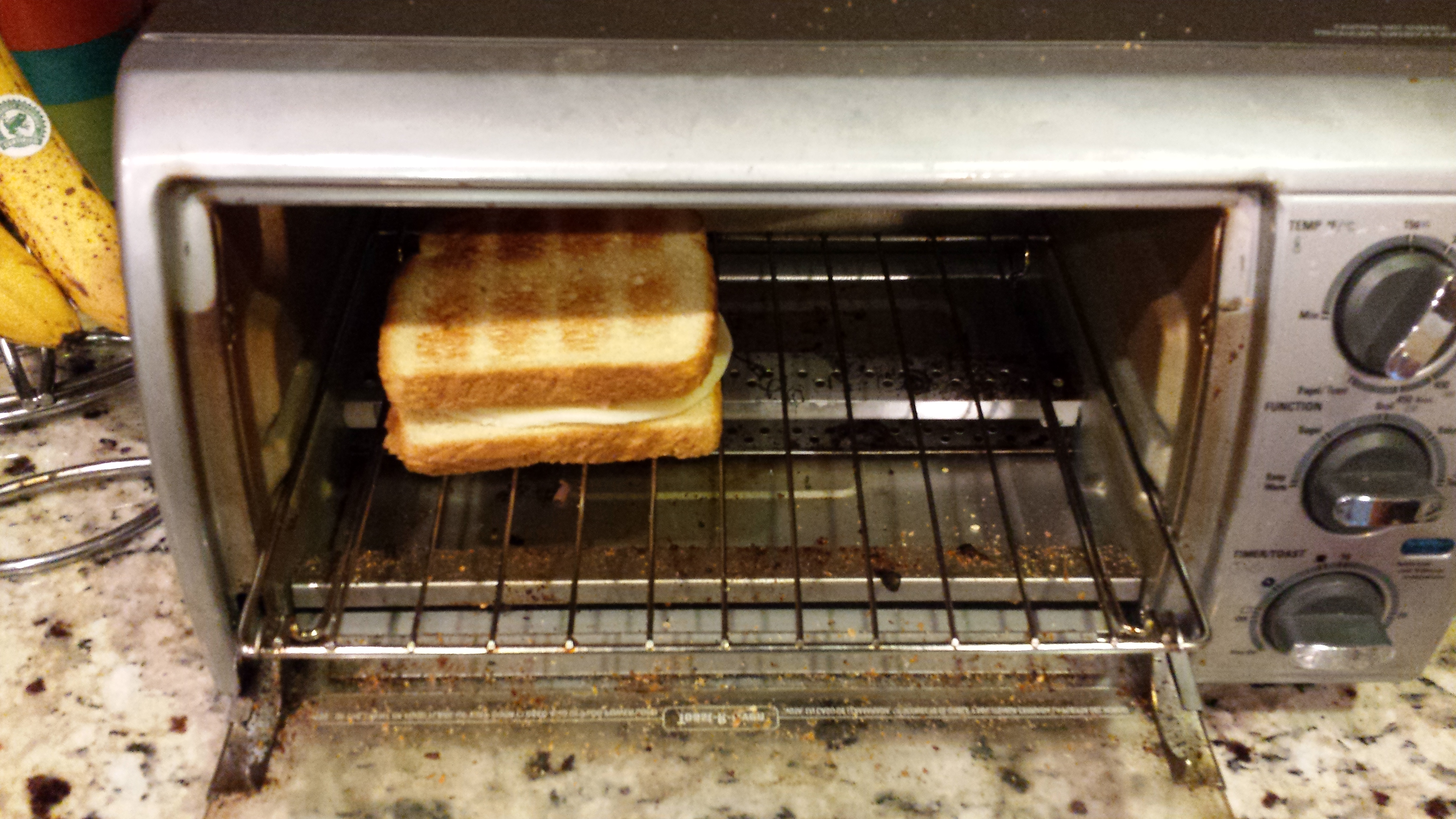 Picture of Toasting the Sandwich.