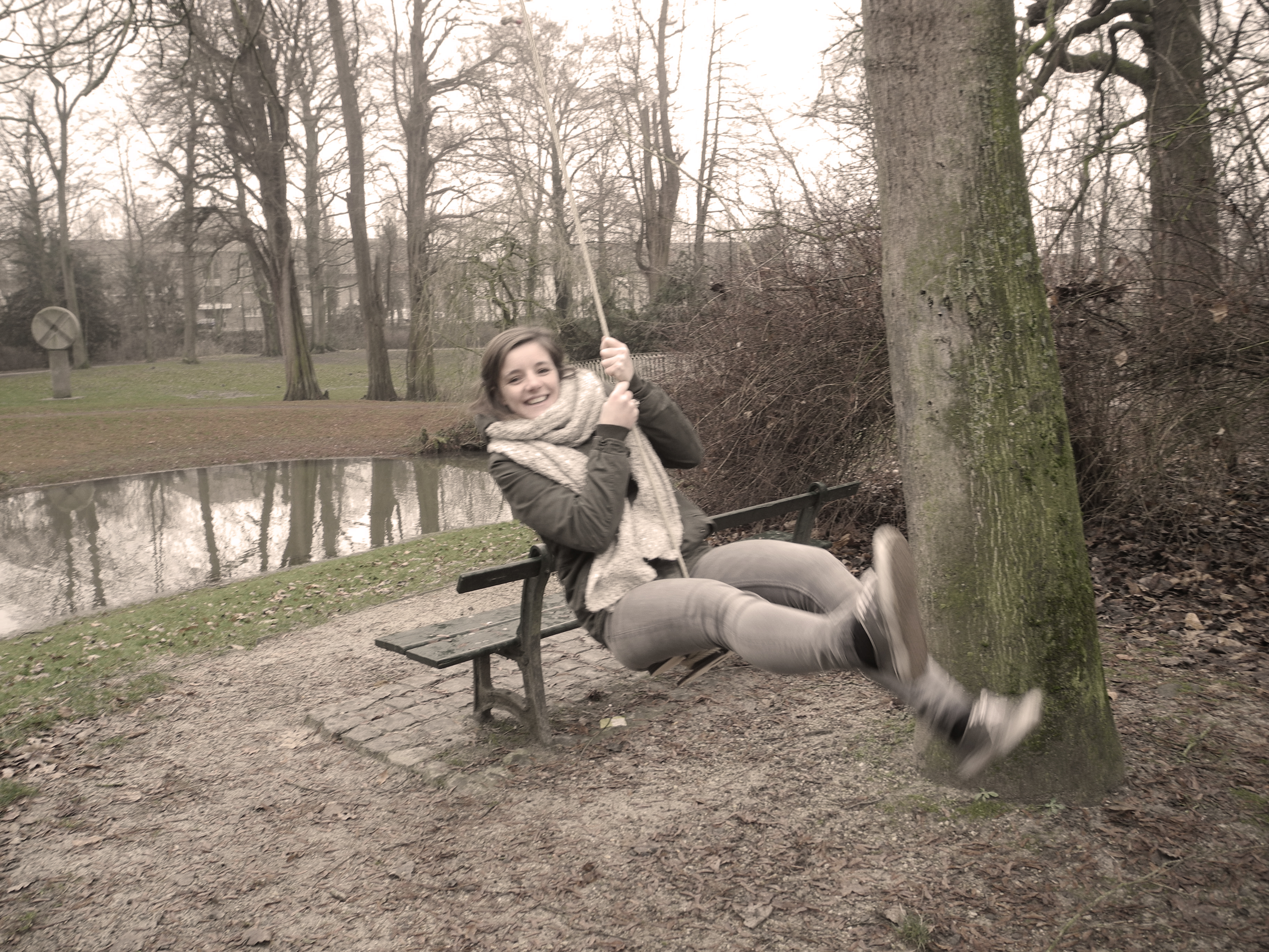 Picture of SWING the Swing