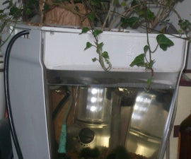 How to make an Aquaponic system for a small room.