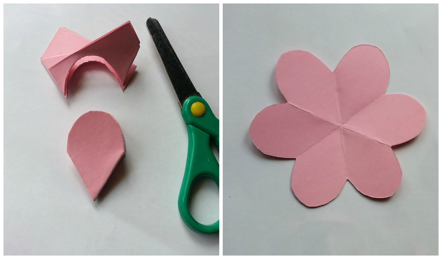 Picture of 6 Petals