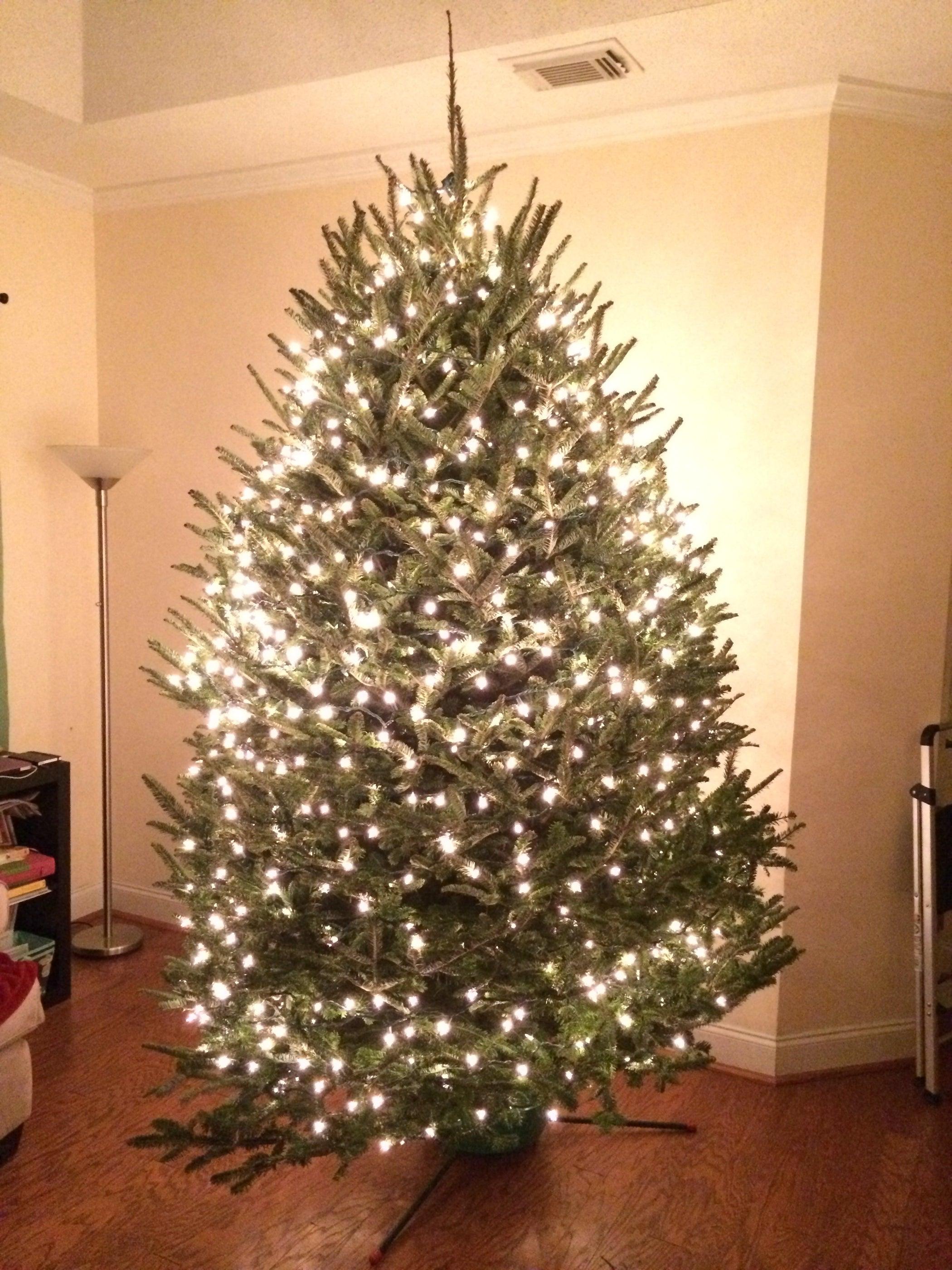 Christmas Tree Removal Bags