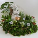 Herb & Flower Garden Centerpiece