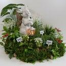 Herb & Flower Garden Centerpiece