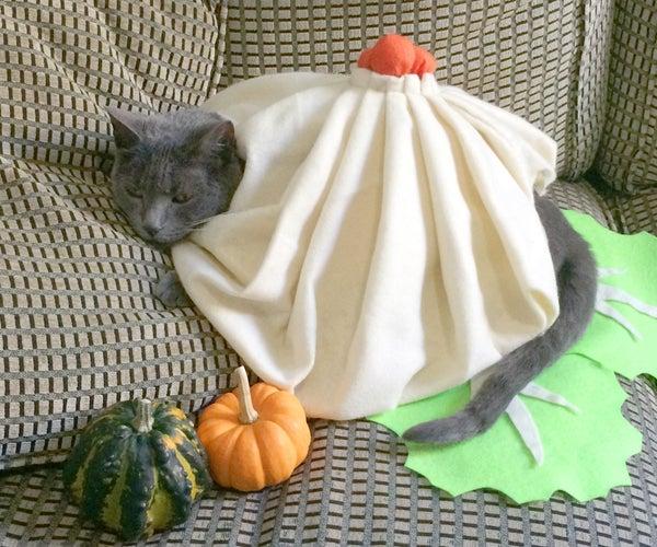 DIY Cat Costume : Soup Dumpling!