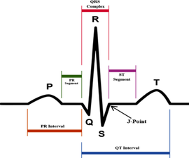 EKG and Heart Rate Monitor With Simple Circuitry and LabView