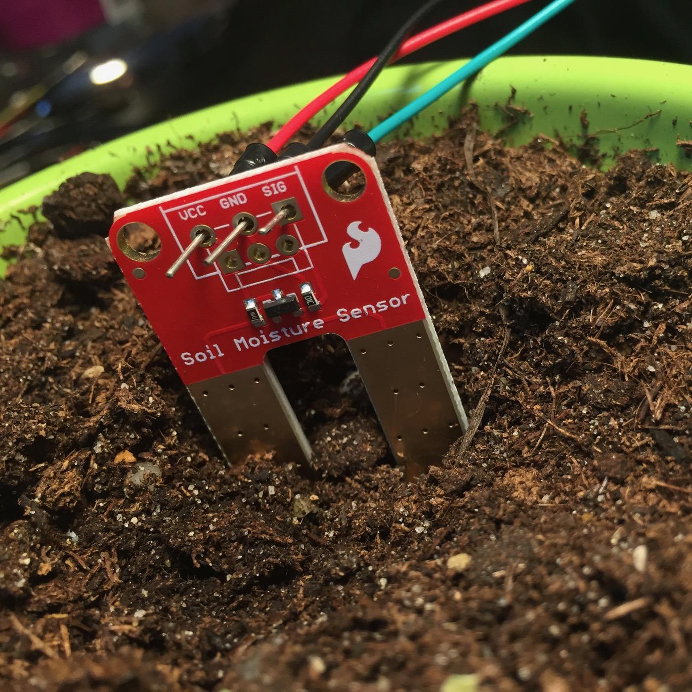 Picture of Soil Moisture Sensor Test Plan