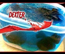 Dexter Bento