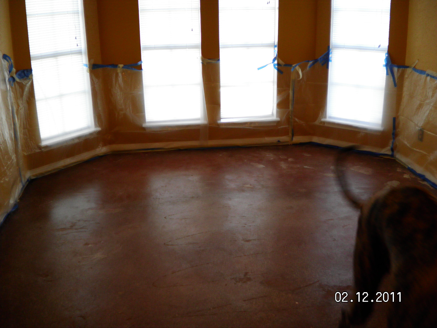 Picture of To Stain Your Floors - Protect Your Walls!