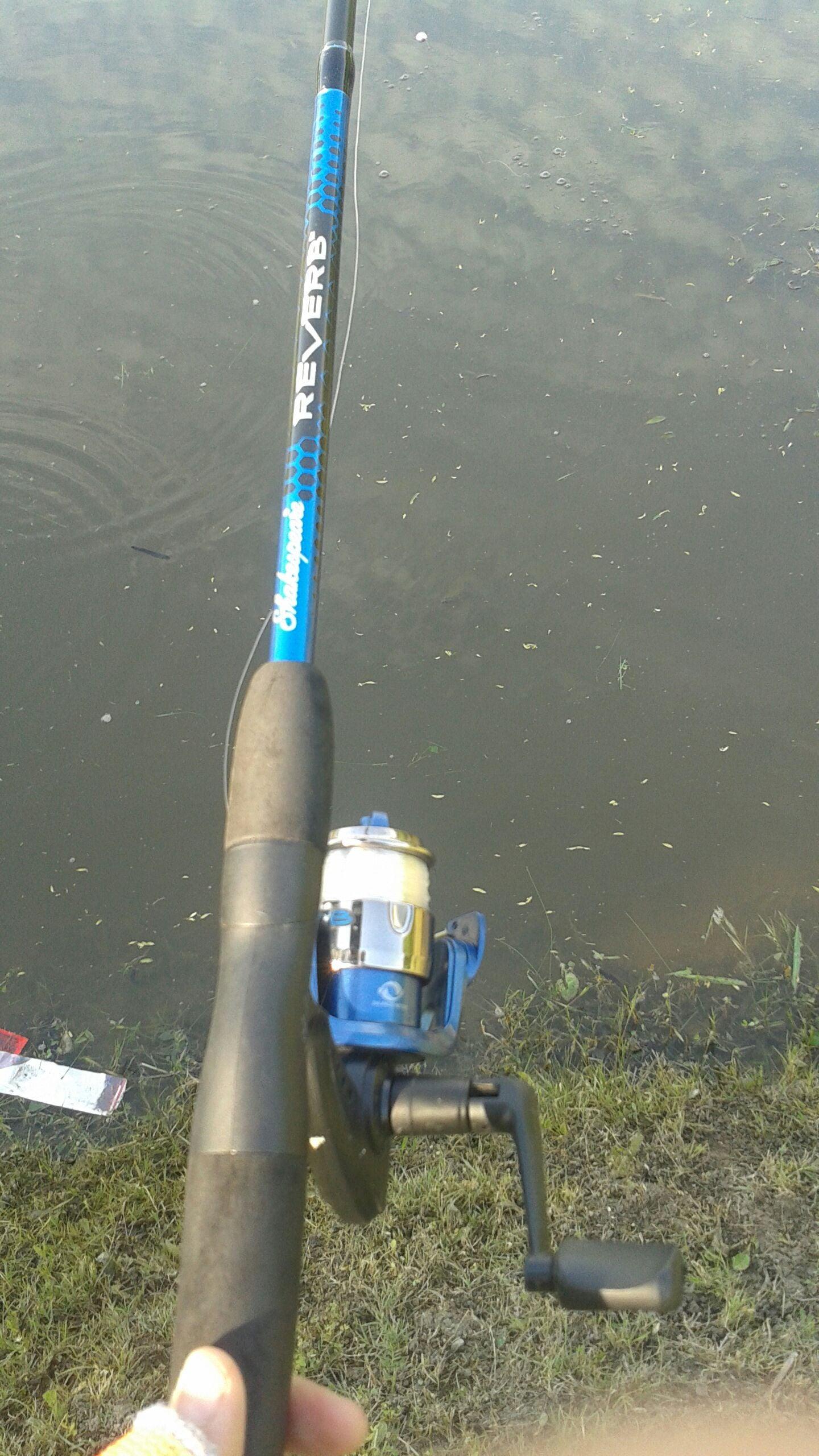 A Guide to Bass Fishing