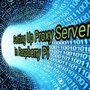 Setting Up Proxy Server in Raspberry Pi
