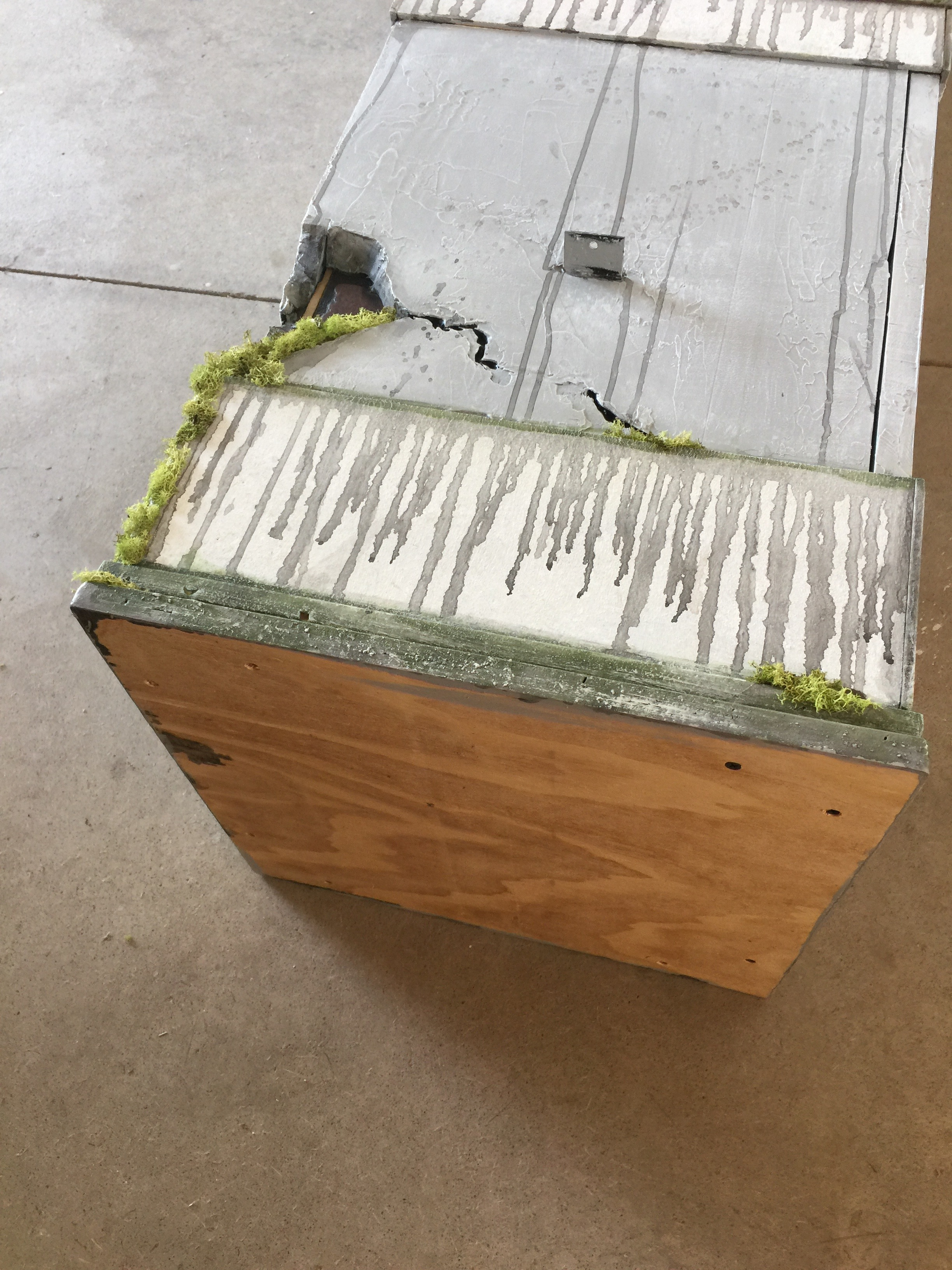 Picture of Adding a Solid Base, Some Additional Color and Moss