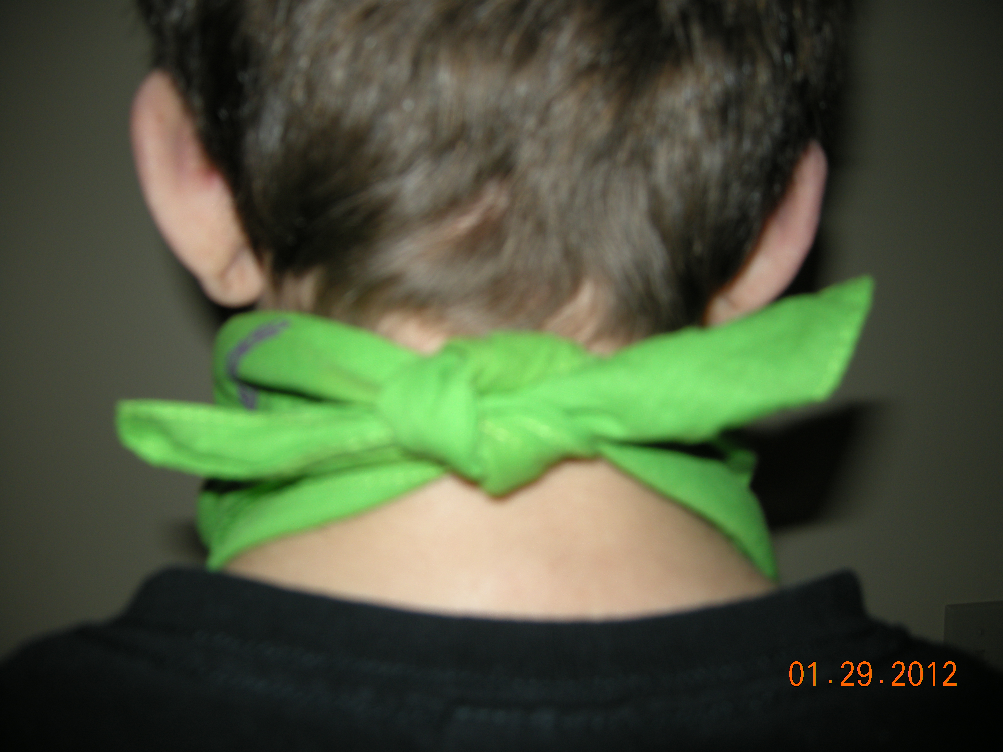 Picture of Step 6:  Fastening to Head/neck