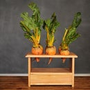 ''beet box'' raspberry pi style