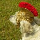 Roman Gladiator Helmet for Dogs