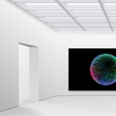Digital Art Installations With Processing and Raspberry PI