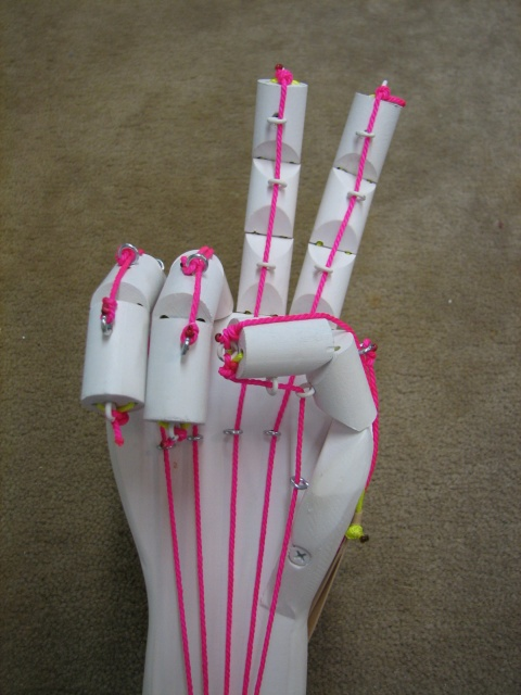 Science Fair - Articulated Hand < $20