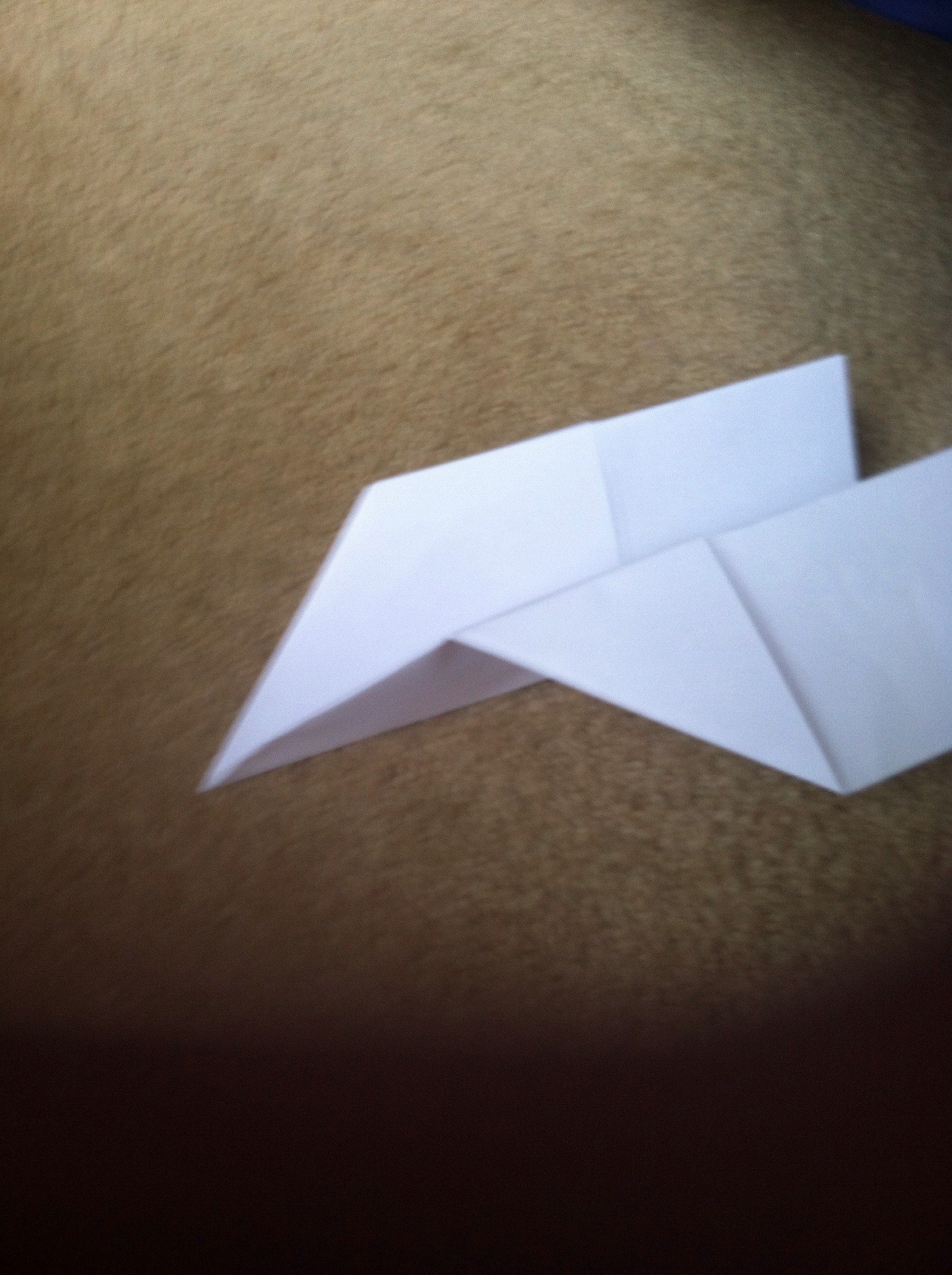 Picture of First Paper Airplane A1