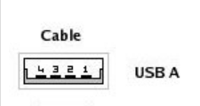 Electrical Network and Wiring