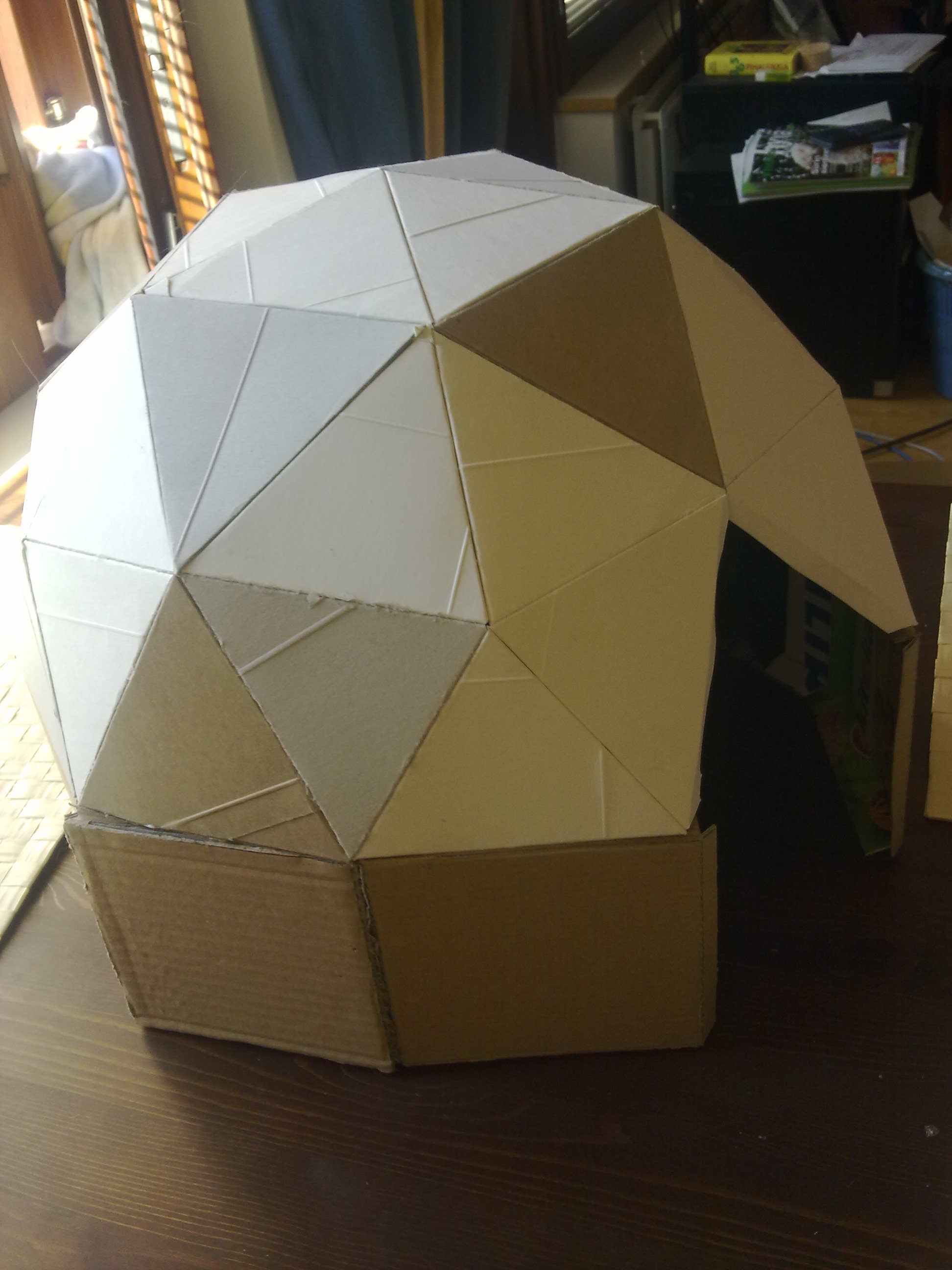 Picture of Cat-sized Cardboard Dome
