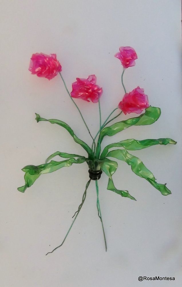 Picture of Flowers Out of Recycled Plastic Bottles. Before and After