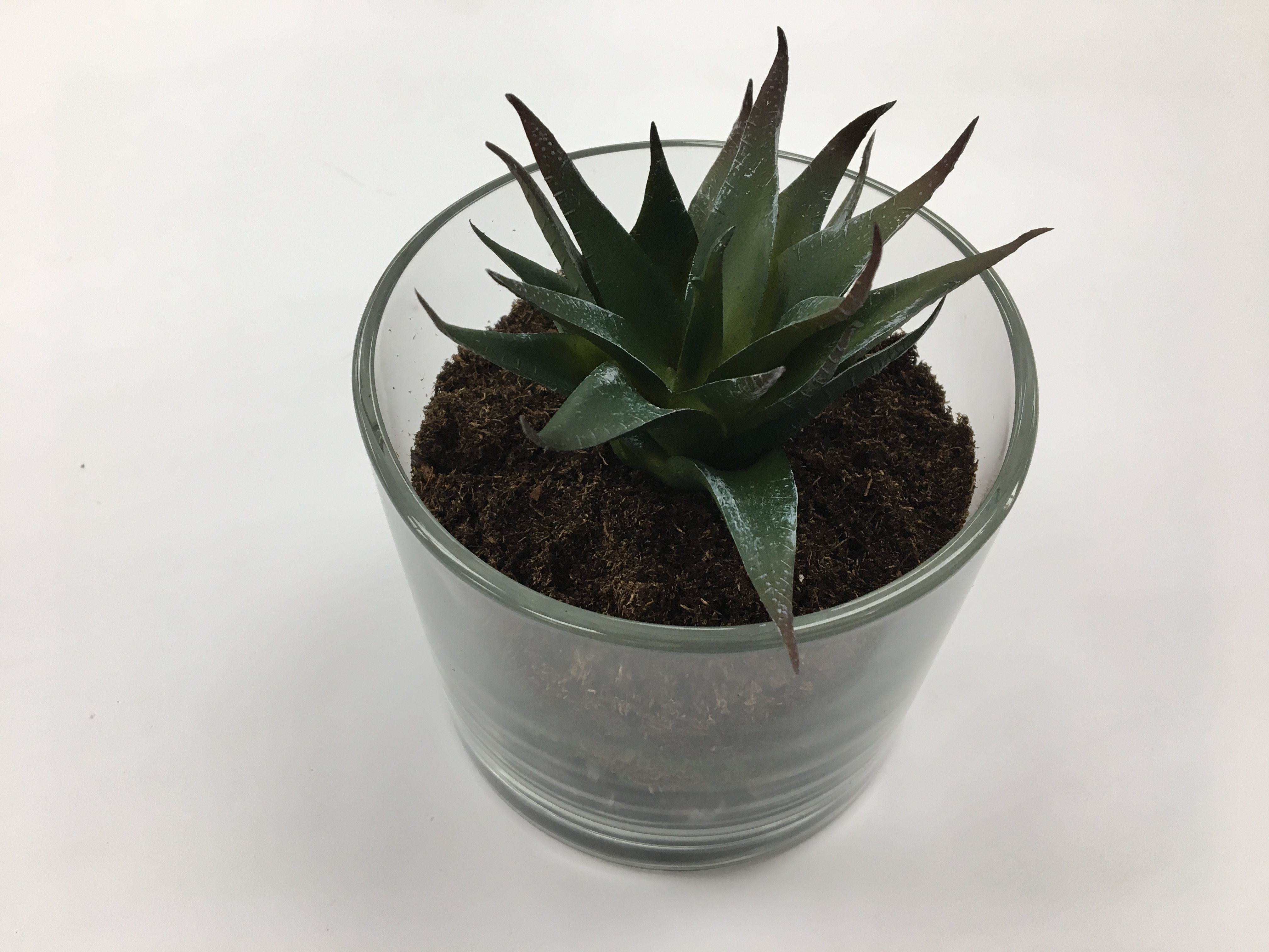 Picture of Add Plant(s)