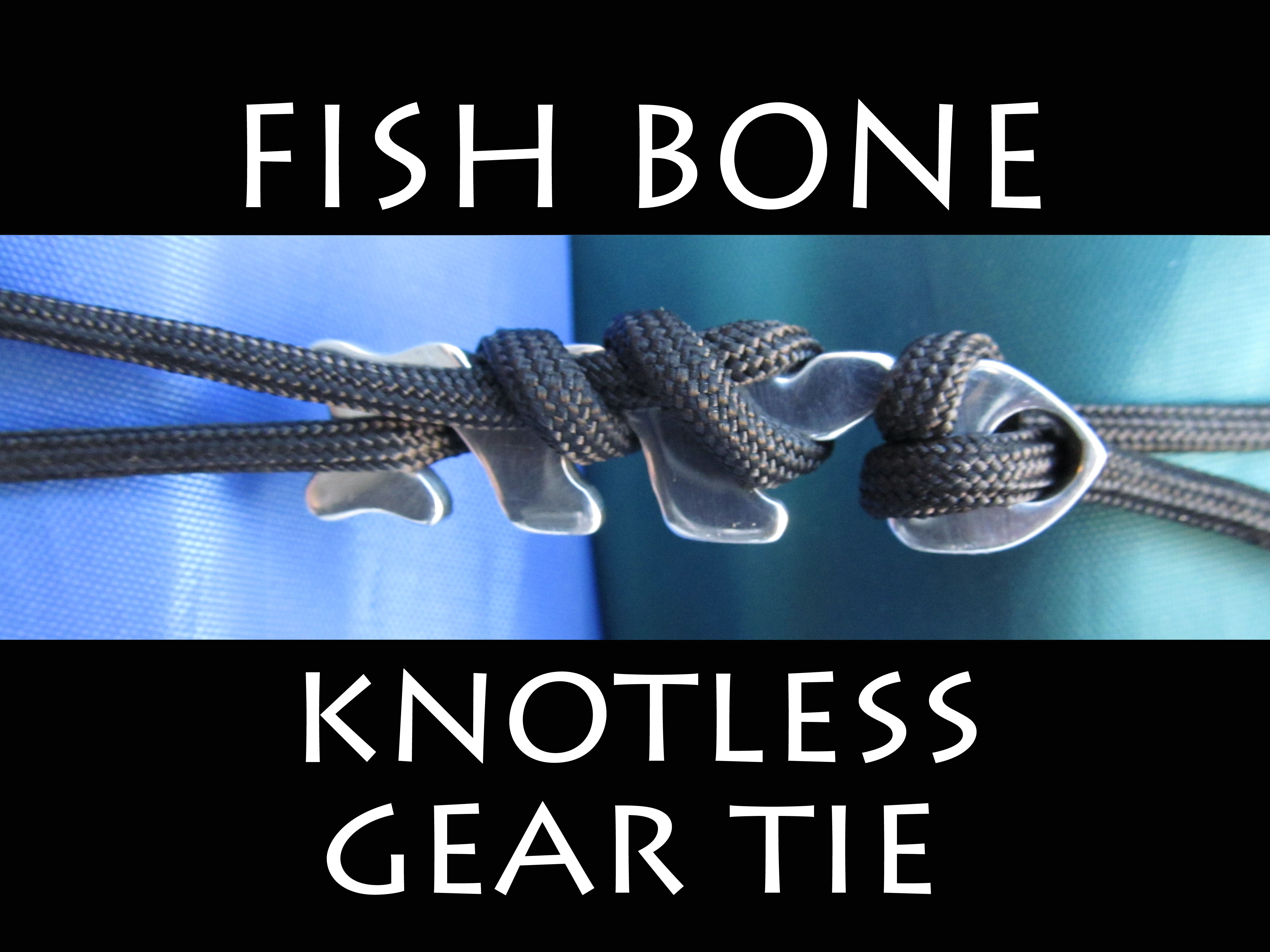 Picture of Fish Bone - Knotless Gear Tie