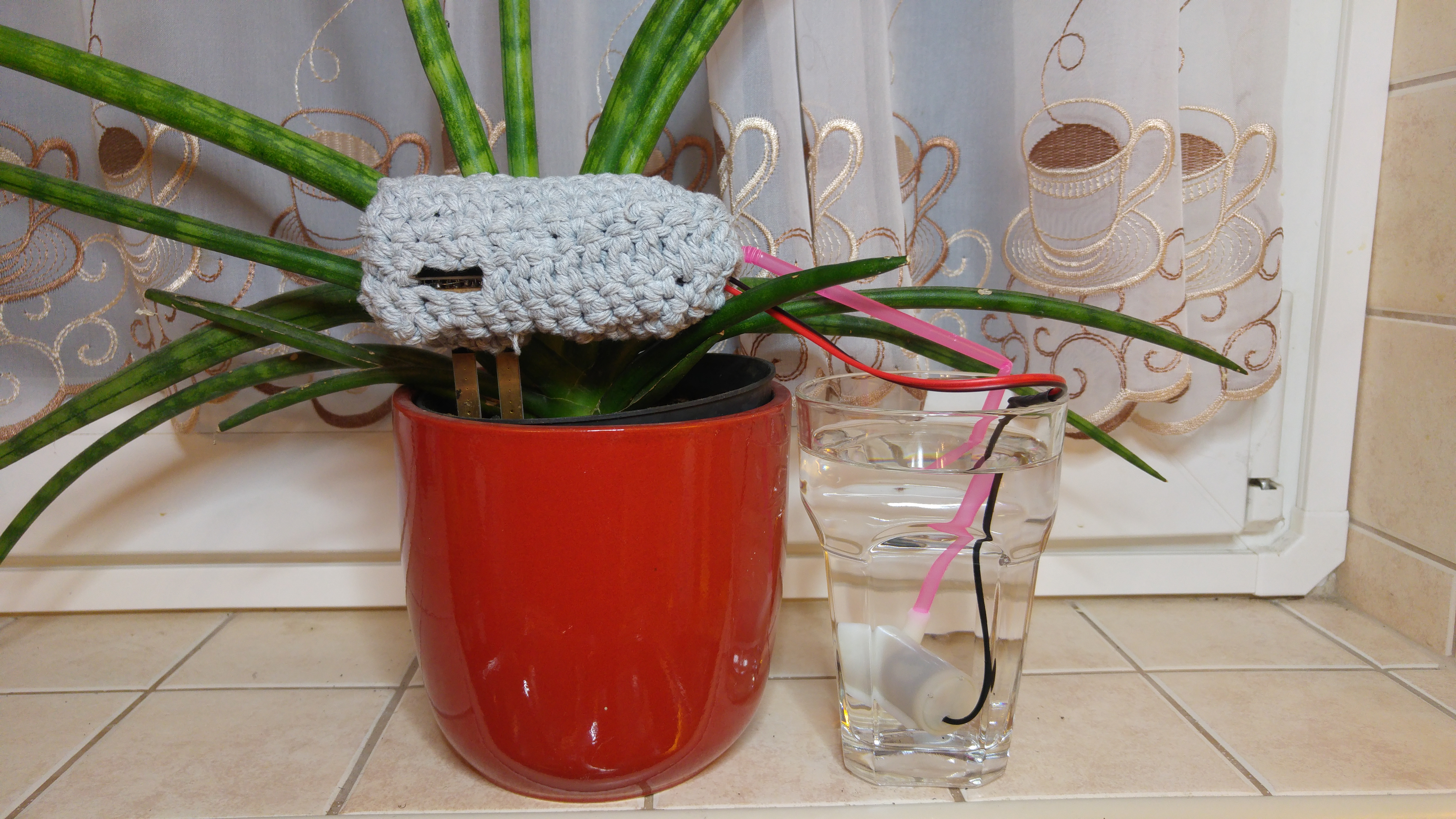 Picture of PlantCare Best DIY Present for Mothers