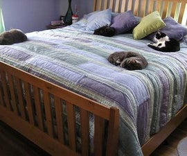 HOW TO PACK AND MOVE YOUR CAT SAFELY TO A NEW RESIDENCE